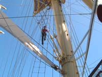 Mast climb, dining room and up on deck